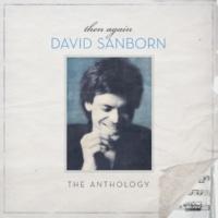 David Sanborn One In A Million