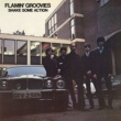 Flamin' Groovies Shake Some Action