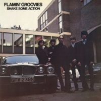 Flamin' Groovies I Saw Her