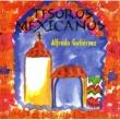 Alfredo Gutierrez Tesoros Mexicanos