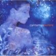 Cantamus Sarah Class : Stay A While