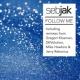 Sebjak Follow Me (DEVolution Club Mix)