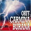 Zubin Mehta Orff : Carmina Burana