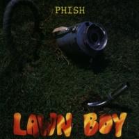 Phish Run Like An Antelope