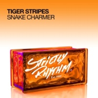 Tiger Stripes Snake Charmer (Tom De Neef Remix)