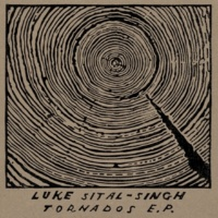Luke Sital-Singh How To Lose Your Life