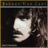 Johnny Van Zandt Love Can Be So Cruel
