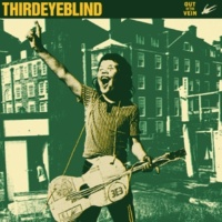 Third Eye Blind The Red Summer Sun (2008 Version)