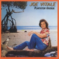 Joe Vitale Sailor Man
