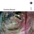 Joel Cohen Carmina Burana [c1230]  -  Apex