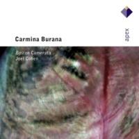 """Joel Cohen Anon / Arr Cohen : Carmina Burana [c1230] : """"Tempus est jocundum"""""""
