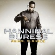 Hannibal Buress Animal Furnace