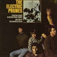 The Electric Prunes Try Me On For Size