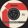 Ambrosia How Much I Feel / Ready For Camarillo [Digital 45]