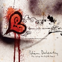 Peter Doherty Through The Looking Glass