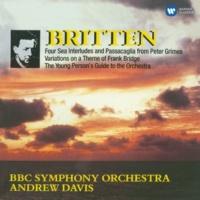 Andrew Davis Britten: Orchestral Works