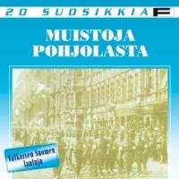 Jussi Raittinen Kuularuiskulaulu