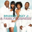 Brandy & Ray J A Family Business
