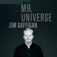 Jim Gaffigan Hotel Pools