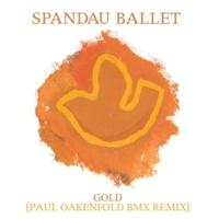 Spandau Ballet Gold (Paul Oakenfold BMX Remix)