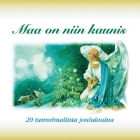 Jyrki Niskanen Sylvian joululaulu - Sylvia's Christmas Song