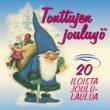 Various Artists Tonttujen jouluyö