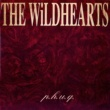 The Wildhearts Sick Of Drugs