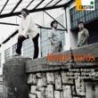 ラデク・バボラーク,清水和音&ローレンツ・ナストゥリカ ブラームス:ホルン三重奏曲 他