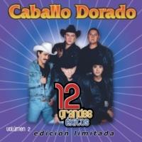 Caballo Dorado 5 muchachos vaqueros