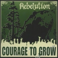 Rebelution Heart Like a Lion