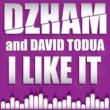 Dzham I Like It
