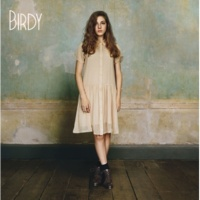 Birdy Terrible Love