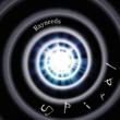 Rayneeds 螺旋