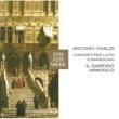 Il Giardino Armonico Vivaldi : Concertos for Lute and Mandolin (DAW 50)
