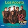 Los Acosta 12 Grandes exitos Vol. 2