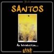 Santos An Introduction