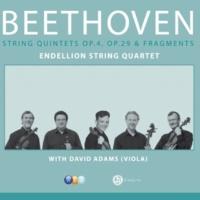 Endellion String Quartet String Quintet in E flat major Op.4 : I Allegro con brio
