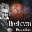 Nikolaus Harnoncourt Beethoven Essentials