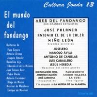 Varios Artistas A Huelva. Fandangos