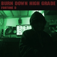 FORTUNE D Burn Down Highgrade