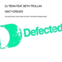 DJ Tekin Wait Forever (feat. Beth Trollan) [Mark Picchiotti Impatient Dub]