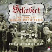 Arnold Schoenberg Chor Lacrimoso son io [Version 1] D131
