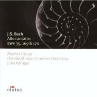 Monica Groop Cantata BWV 35 : Geist und Seele wird verwirret - 5. Sinfonia