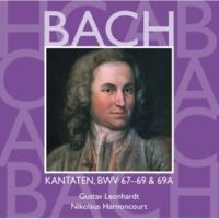 "Gustav Leonhardt Cantata No.67 Halt im Gedächtnis Jesum Christ BWV67 : I Chorus - ""Halt im Gedächtnis Jesum Christ"" [Choir]"