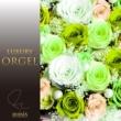 ラグジュアリー オルゴール ラグジュアリー オルゴール J-POP Hits Vol.4