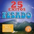 Pesado 25 Exitos Pesados (Vol. 1) (USA)