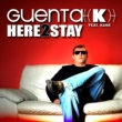 Guenta K. Here 2 Stay feat. Kane - DJ Solovey Remix