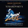 Various Artists Swan Lake [Matthew Bourne version]