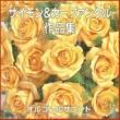 オルゴールサウンド J-POP オルゴール作品集 サイモン & ガーファンクル
