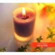 Various Artists Mozart Beloved 8 - Healing